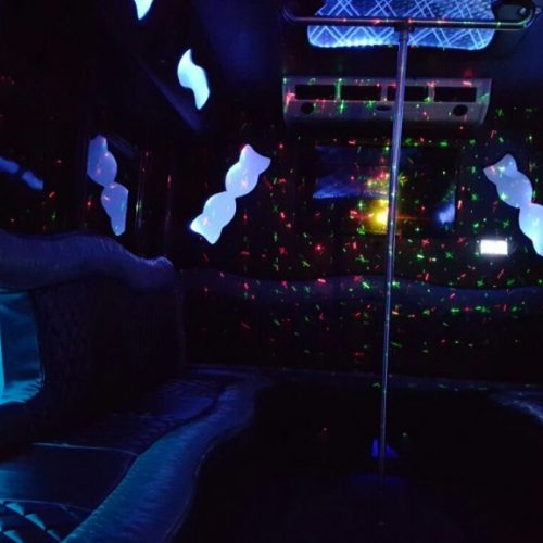 Houston Party Bus Lounge S 15 passenger Interior