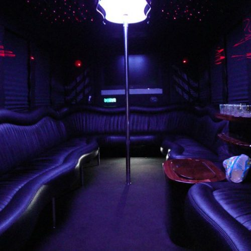 Houston Party Bus Lounge X 20 Passenger