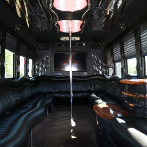 Houston Party Bus Lounge X 20 Passenger Interior