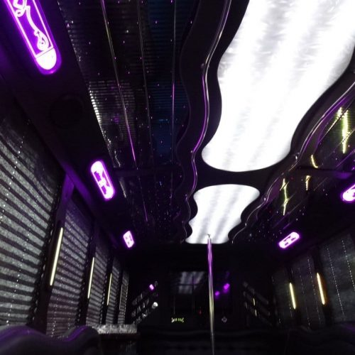 Houston Party Bus Lounge XL 32 passenger