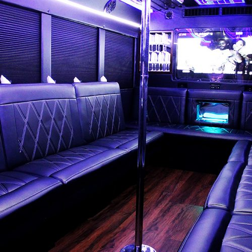 Party Bus Rental Houston 23 passenger